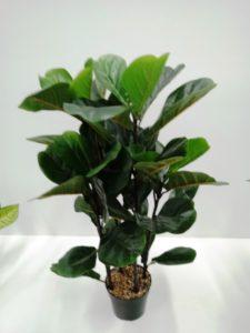 Planta Artificial Ficus Pandurata
